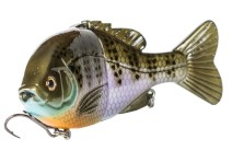 bgc-glide-bluegill-orange